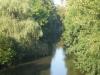 Le Célé (vue du pont du pin)